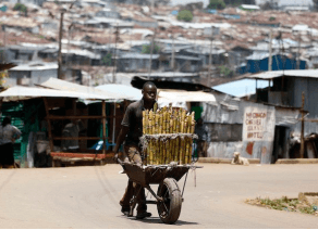 'Africa needs to close productivity gap to avert jobs crisis' – OECD