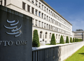 MPs ratify entry into WTO