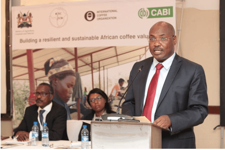 Stakeholders launch Ksh.95B project to boost Africa's coffee industry