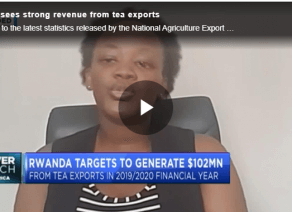 Rwanda sees strong revenue from tea exports